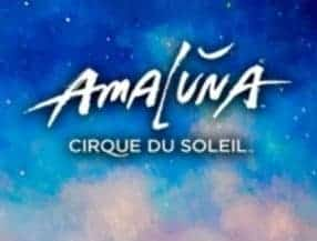 Cirque Du Soleil Amaluna logo